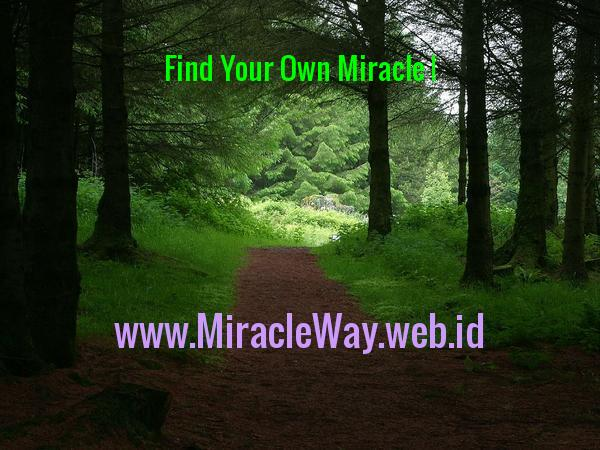 find your own miracle