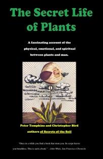 rahasia hubungan manusia dan tumbuhan